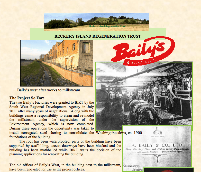 Bailys report after the fire